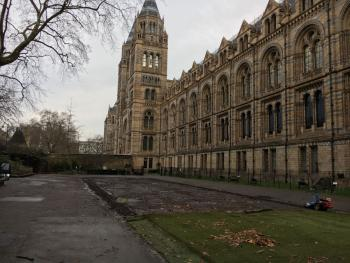 National History Museum 2018