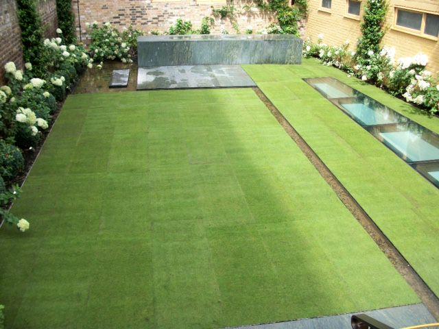 Rolawn Medallion Turf >> Rolawn Medallion Turf - The London Lawn Turf Company
