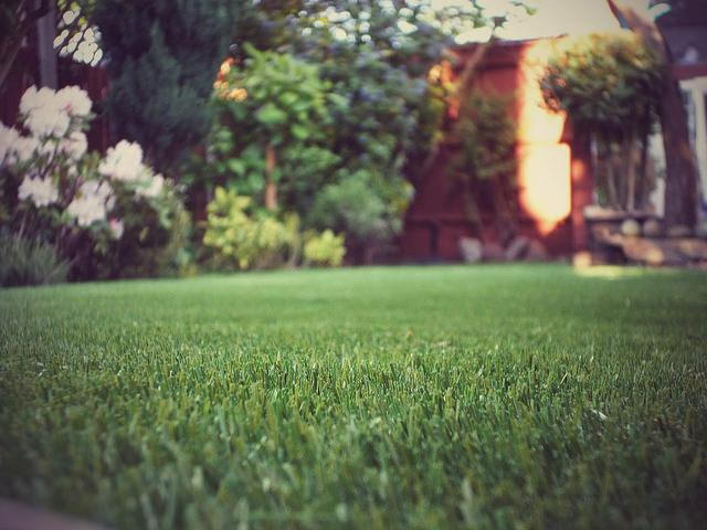 Who should consider getting artificial grass?