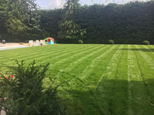 A guide to turf laying in the summertime
