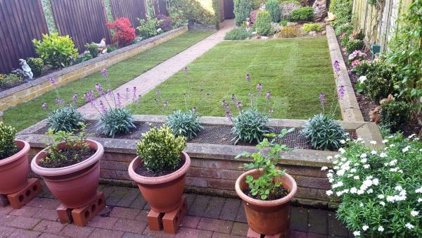 Get your Garden Ready for Spring