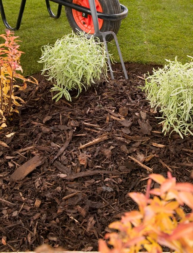 The best way to use Landscaping bark in a London garden
