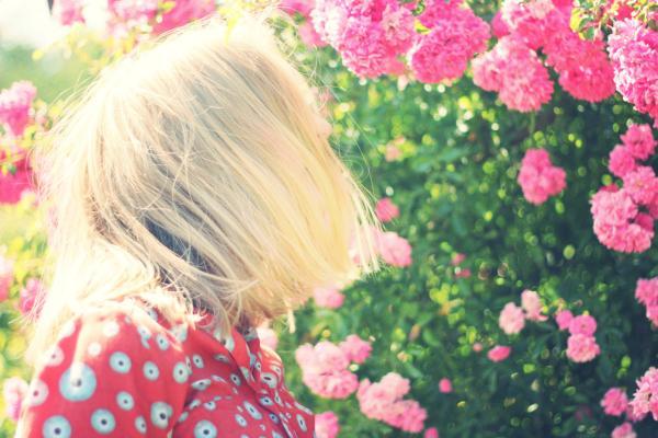 5 Health Benefits of Gardening