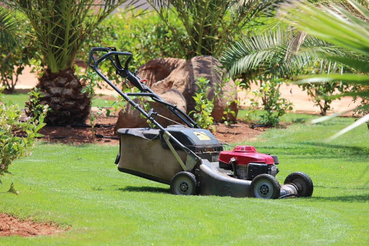 Burn calories whilst mowing your lawn