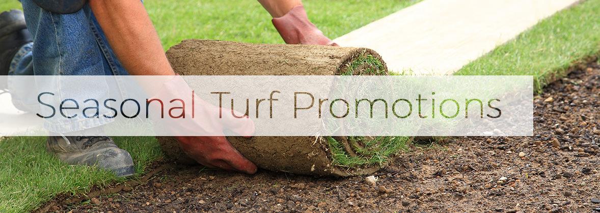 seasonal turf promotions