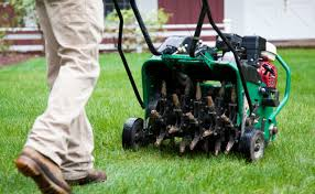 7 Quick Tips on Lawn Aeration